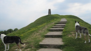 Part way up the Tor. Jamie's dogs, Lady and Blue, are leading the way
