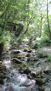 On the way to St. Nectan's