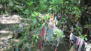 Offerings left at the waterfall by pilgrims.