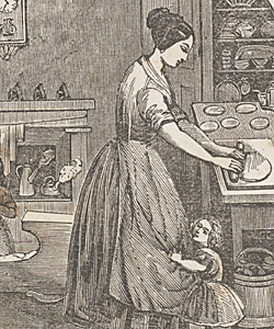Sex procreation nineteenth century america